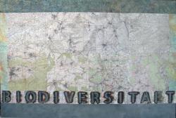BIODIVERSITAET 2013 <br>Messtischblätter auf Leinwand 1350 x 2000 mm